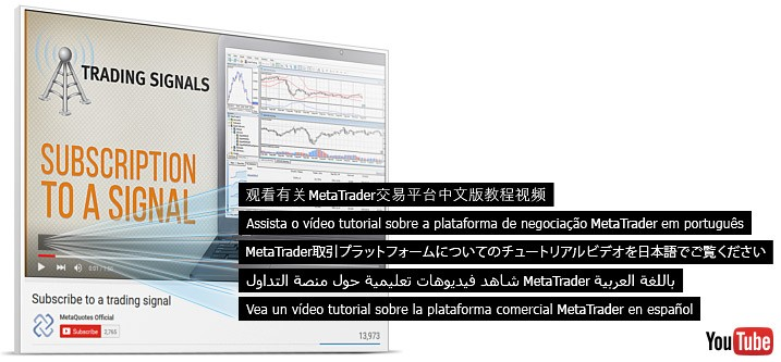 7_subtitles_on_MetaTrader_tutorials.jpg